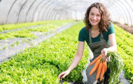 come diventare agricoltore